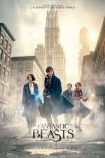 Ansehen Fantastic Beasts and Where to Find Them Zmovies