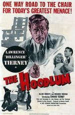 Ver The Hoodlum Letmewatchthis