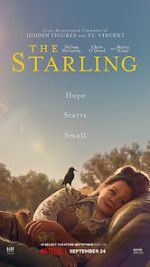 Ansehen The Starling Zmovies